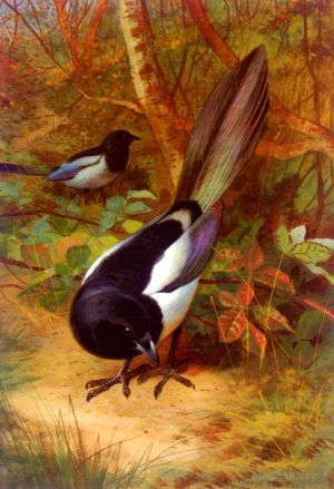 Antique Oil Painting - Magpies