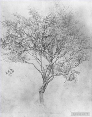 Antique Various Paintings - Study of a Lemon Tree